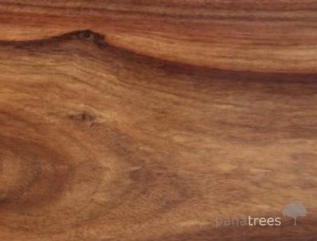 Quira Granadillo Macacauba wood texture