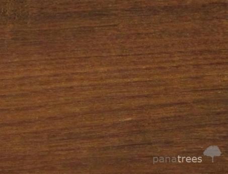 IPe Guayacan wood texture