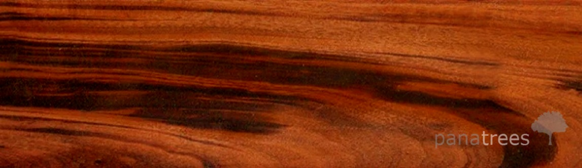 Togerwood Zorro Goncalo Alves wood texture