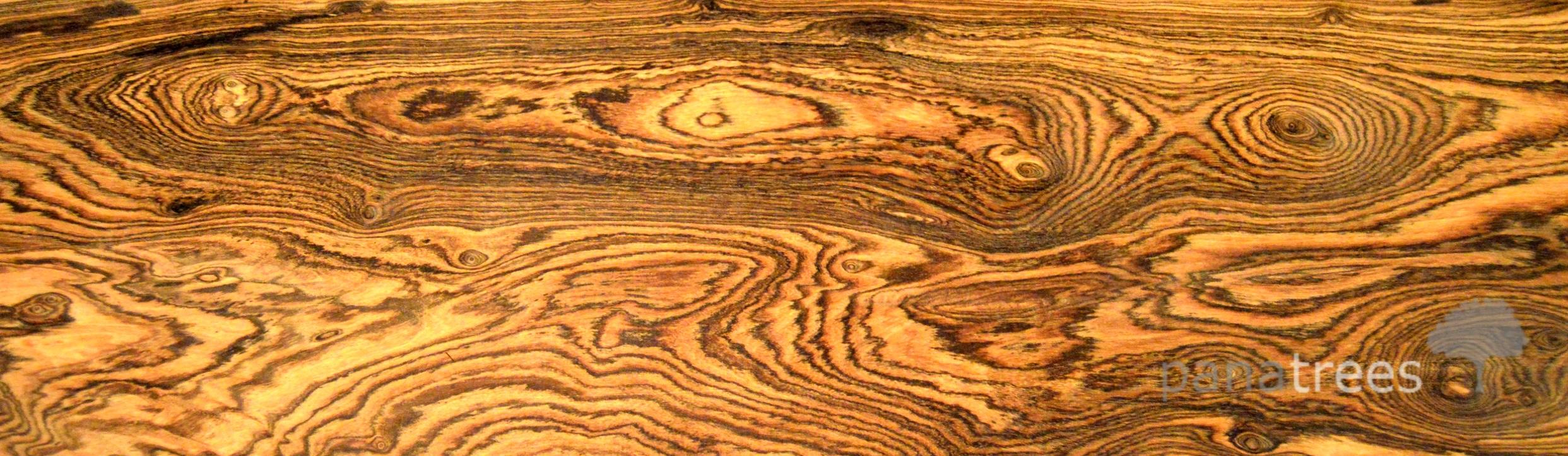Ziricote wood texture