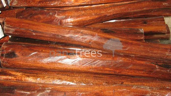 Snakewood Logs